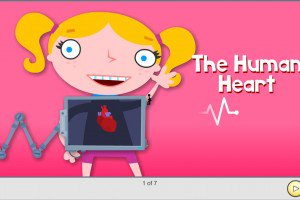 Preschool The Human Heart