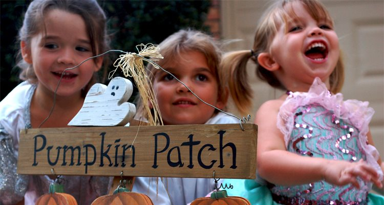 Trick AND treat your guests this weekend with these 5 Halloween party ideas!