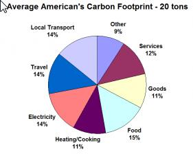 pie chart of average american's carbon footprint - 20 tons