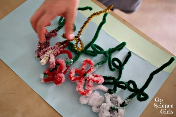 Crystal flower craft to show how crystals grow