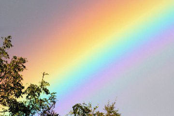 Learn the science behind the rainbow with three science tricks.