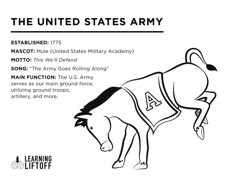 US Armed Forces Fun Facts and