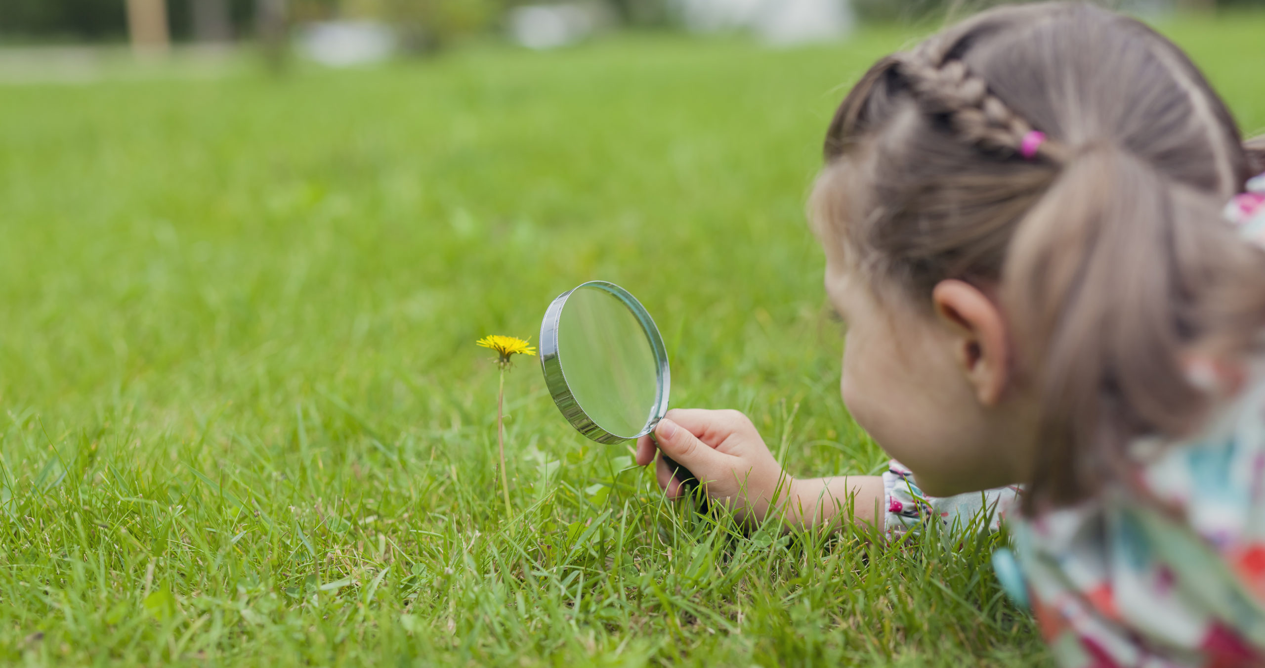 little girl looking at flower with magnifying glass