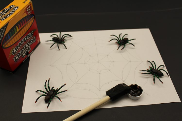 "Illustration of a spider web with all necessary materials to create a ""magic"" spider web"