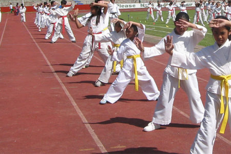 kids learning karate