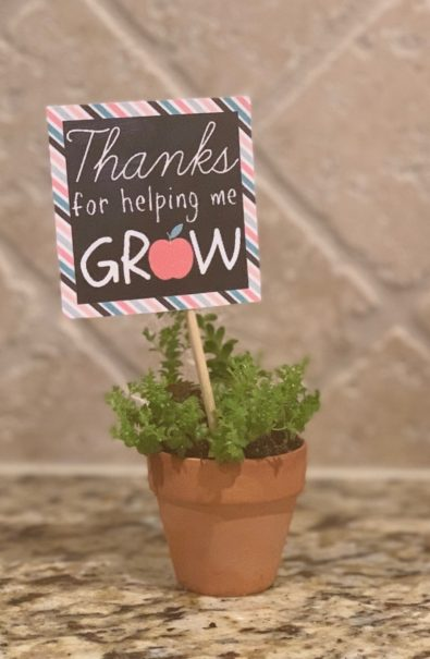 plant with thank you note