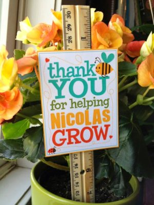 ruler in plant with thank you note