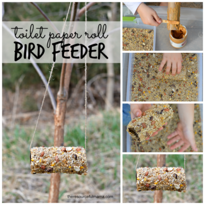 toilet-paper-roll-bird-feeders-square