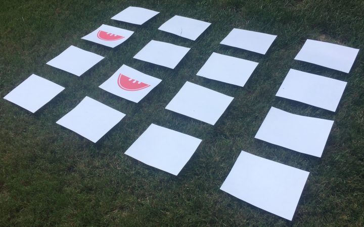 picture cards laid out on a lawn