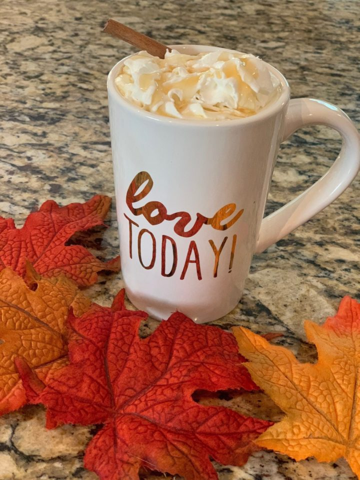 mug with apple cider and whipped cream